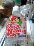 CarpWater勝鯉の水