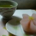鹿児島煎茶さえみどり