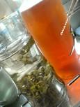 2008初!水出し茶(1)