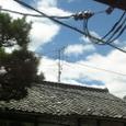 台風一過の空の色(2)