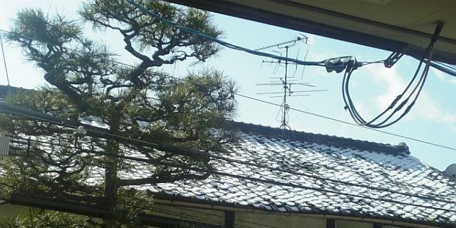 瓦屋根の雪化粧